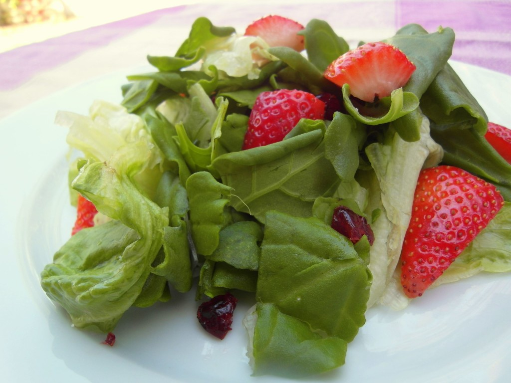 Strawberry Cranberry Spinach Salad Mediterranean food Vegan Recipe by Vegan Slaughterer Yaeli Shochat 1